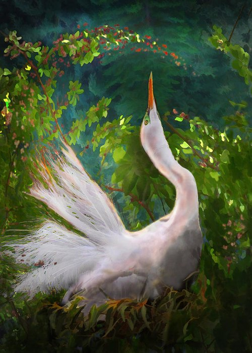 Egret Greeting Card featuring the photograph Flamboyant Egret by Melinda Hughes-Berland