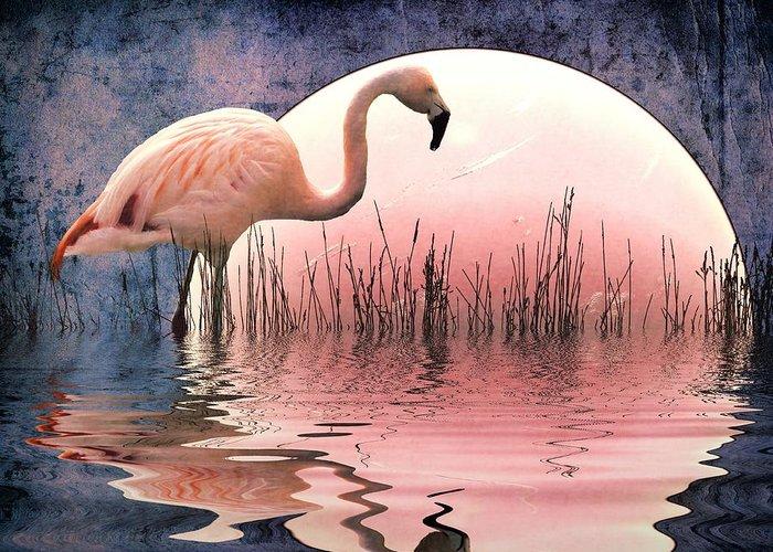 Flamingo Prints Greeting Card featuring the photograph Flamingo Moon by Sharon Lisa Clarke