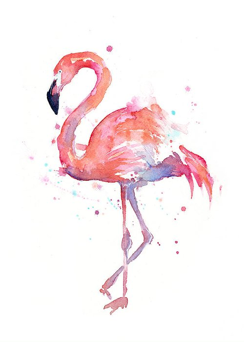 Bird Greeting Card featuring the painting Flamingo Watercolor by Olga Shvartsur