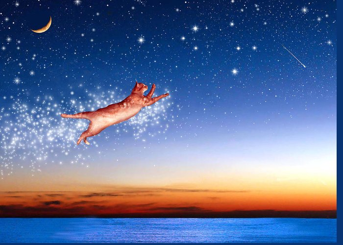 Constellations Greeting Card featuring the digital art Flight To Sagittarius by Kathleen Horner