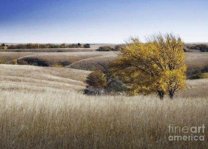 Flint Hills Greeting Card featuring the photograph Flint Hills Autumn 013 by Fred Lassmann