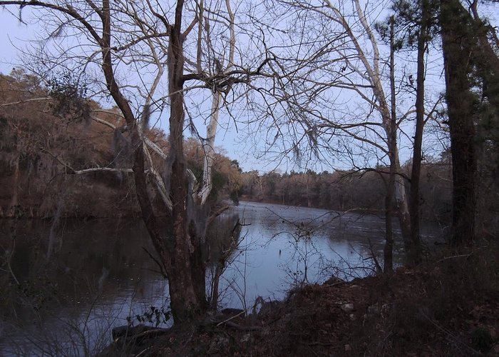 Digital Photo Greeting Card featuring the photograph Flint River 4 by Kim Pate