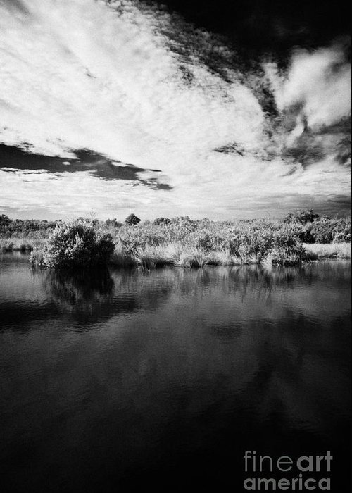 Florida Greeting Card featuring the photograph Flooded Grasslands And Mangrove Forest In The Florida Everglades by Joe Fox