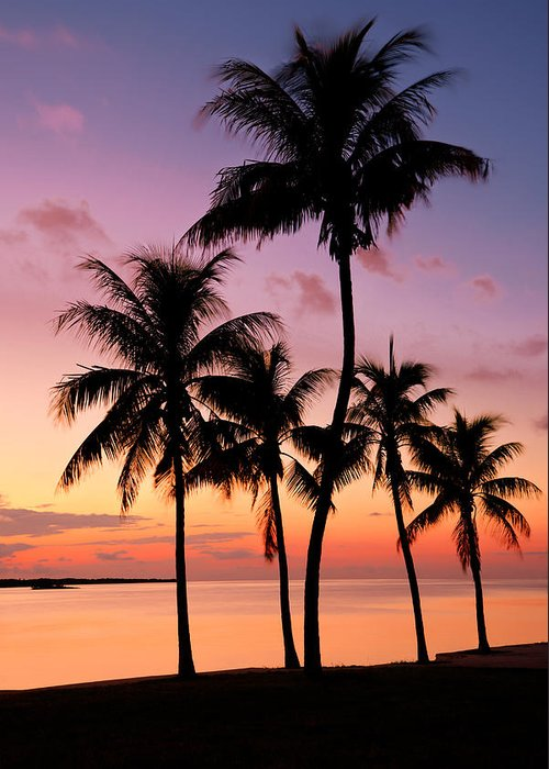 Tropical Landscapes Greeting Cards