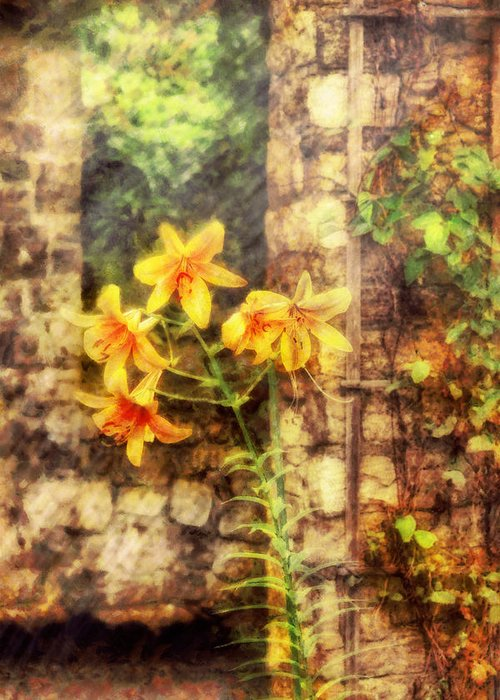 Yellow Greeting Card featuring the photograph Flower - Lily - Yellow Lily by Mike Savad