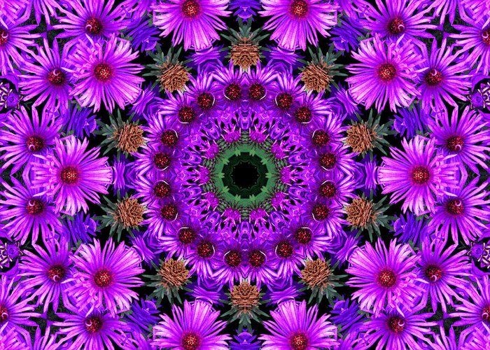 Kaleidoscope Greeting Card featuring the photograph Flower Power by Kristie Bonnewell