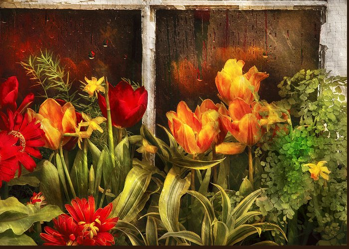 Garden Scene Photographs Greeting Cards