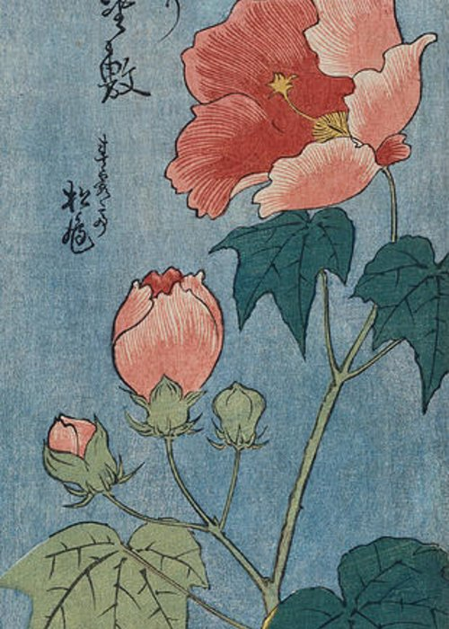 Japanese Greeting Card featuring the painting Flowering Poppies Tanzaku by Ando Hiroshige