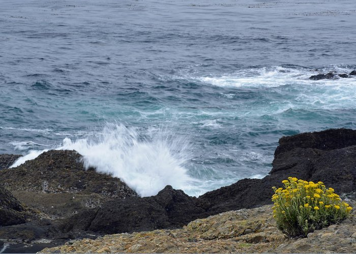 Point Lobos Greeting Card featuring the photograph Flowers And Crashing Waves by Bruce Gourley