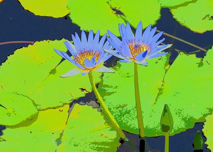 Hawaii Greeting Card featuring the photograph Flowers And Lily Pads by Patrick Roberto