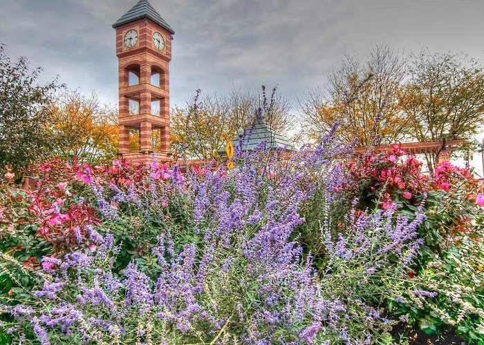 Clock Tower Greeting Card featuring the photograph Flowers - Clock Tower by L Wright