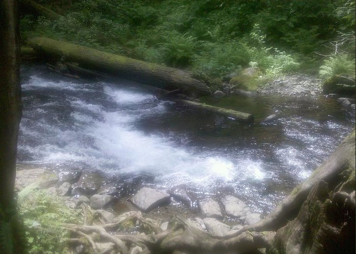 Nature Greeting Card featuring the photograph Flowing Water by Heather L Wright