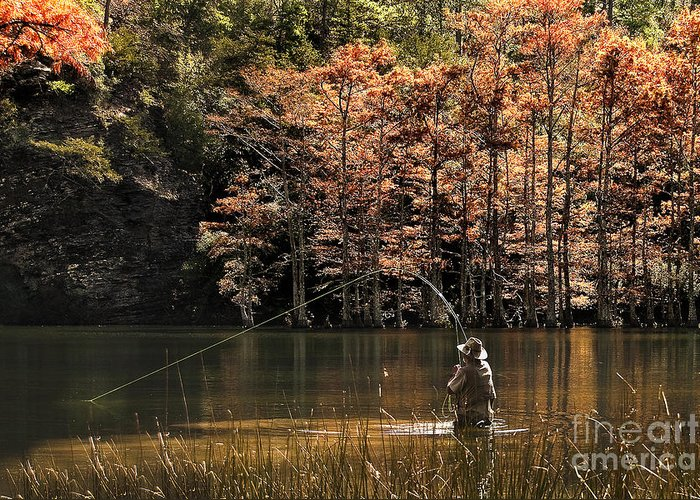 Tamyra Ayles Greeting Card featuring the photograph Fly Fishing by Tamyra Ayles