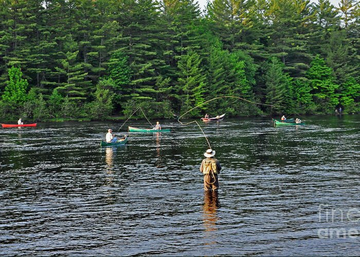 Fly Fishing Greeting Card featuring the photograph Fly Fishing West Penobscot River Maine by Glenn Gordon