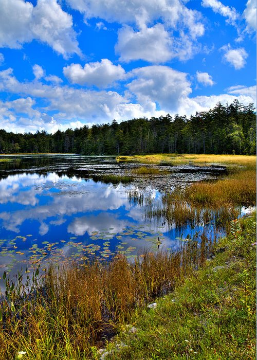 Fly Pond Greeting Card featuring the photograph Fly Pond In The Adirondacks II by David Patterson