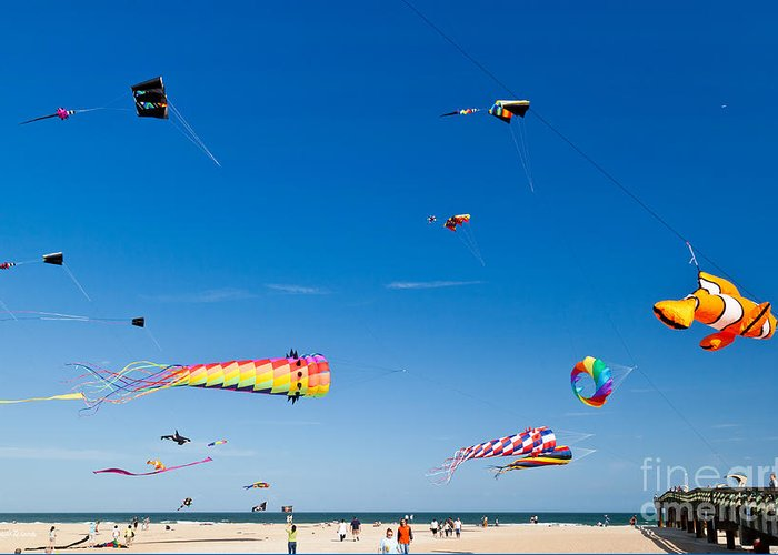 Flying Kites At St Augustine Beach Pier Greeting Card featuring the photograph Flying Kites At St Augustine Beach Pier by Michelle Wiarda-Constantine