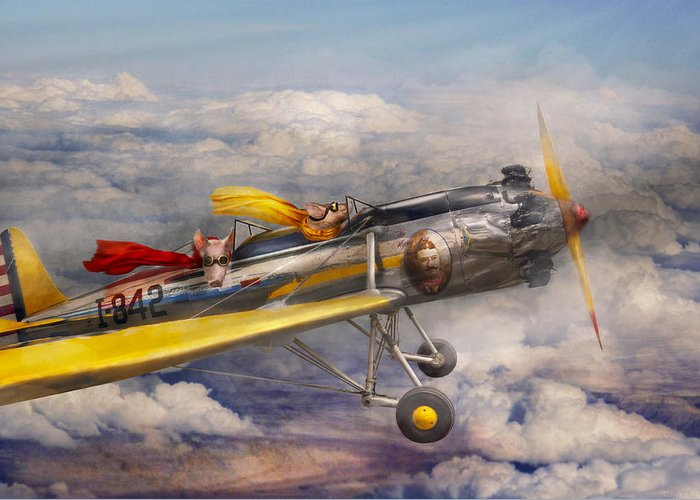 Pig Greeting Card featuring the photograph Flying Pig - Plane - The Joy Ride by Mike Savad