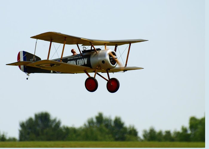 Radio Controlled Airplane Greeting Card featuring the photograph Flying Rc by Thomas Young