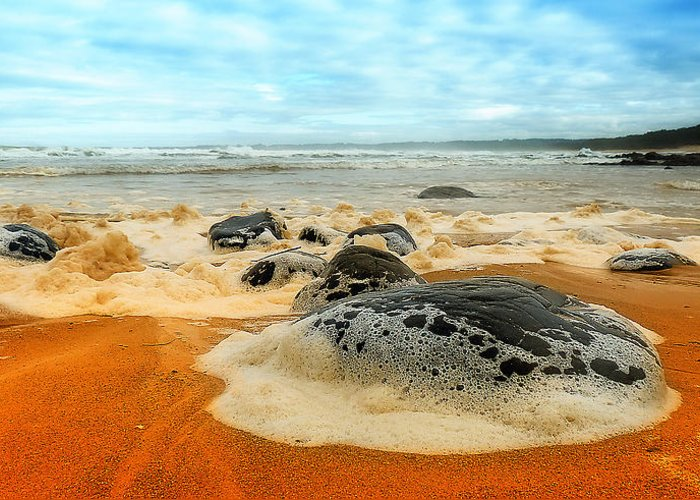 Saltwater Nsw Greeting Card featuring the photograph Foam Rocks 01 by Kevin Chippindall