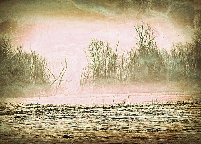 Landscape Greeting Card featuring the photograph Fog Abstract 1 by Marty Koch