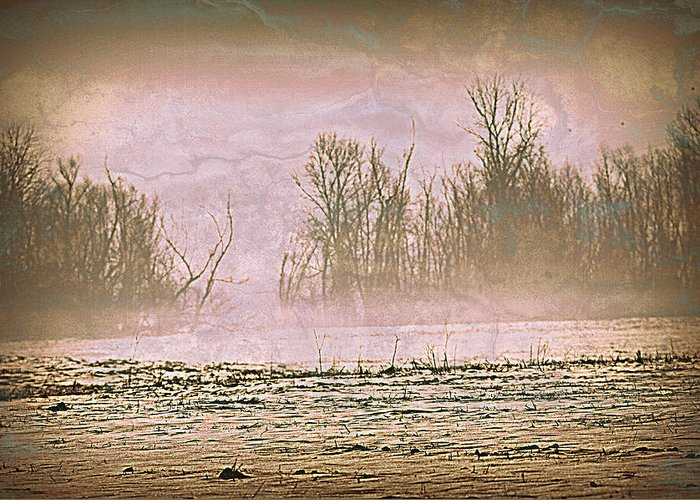 Landscape Greeting Card featuring the photograph Fog Abstract 2 by Marty Koch
