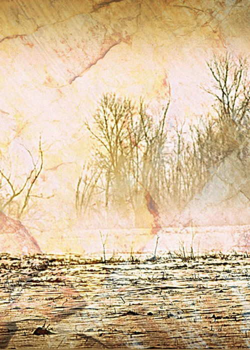 Landscape Greeting Card featuring the photograph Fog Abstract 4 by Marty Koch