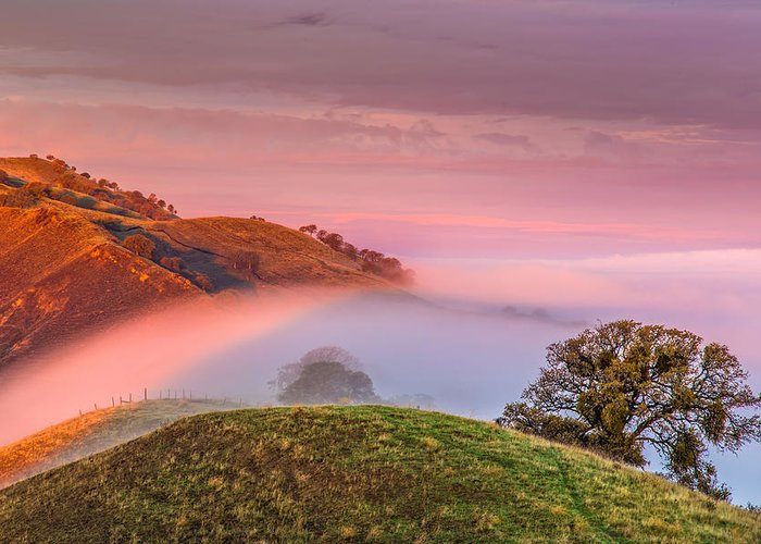 Landscape Greeting Card featuring the photograph Fog Flow 12-8-14 by Marc Crumpler