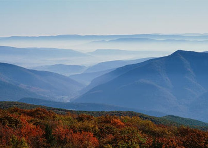Dolly Sods Wilderness Greeting Cards