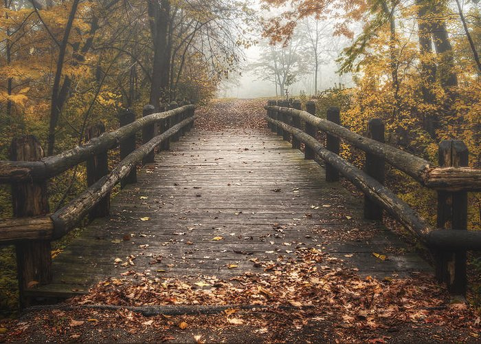 Bridge Greeting Card featuring the photograph Foggy Lake Park Footbridge by Scott Norris