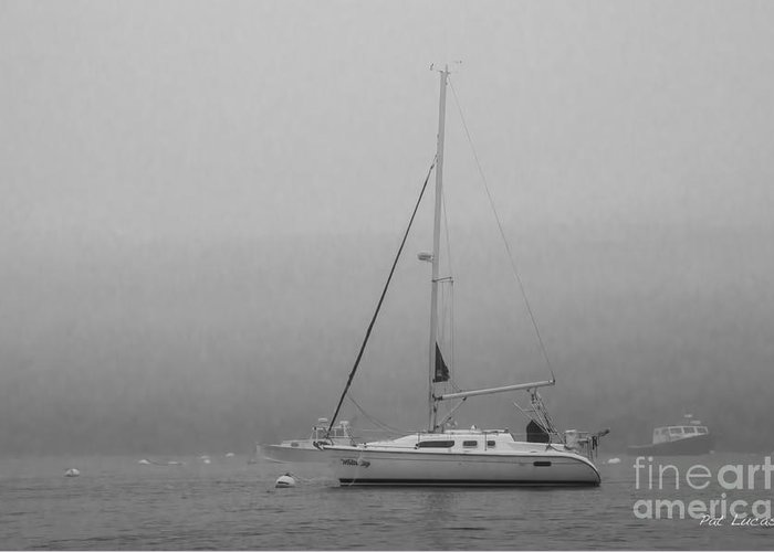 Sailboat Greeting Card featuring the photograph Foggy Maine by Pat Lucas