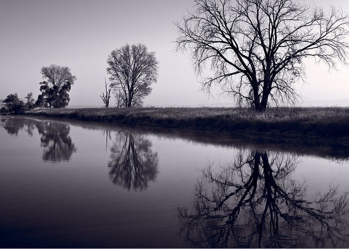 Fog Greeting Card featuring the photograph Foggy Morn Bw by Steve Gadomski