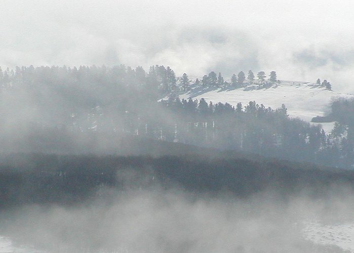 Greeting Card featuring the photograph Foggy Morning by Heather Farr