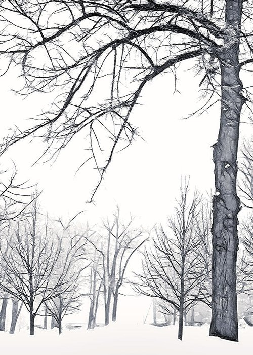 Fog Greeting Card featuring the photograph Foggy Morning Landscape - Fractalius 6 by Steve Ohlsen