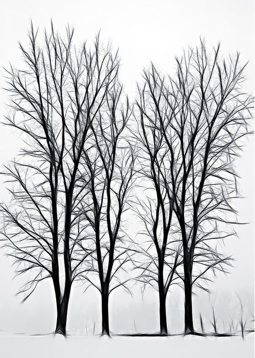 Fog Greeting Card featuring the photograph Foggy Morning Landscape - Fractalius by Steve Ohlsen