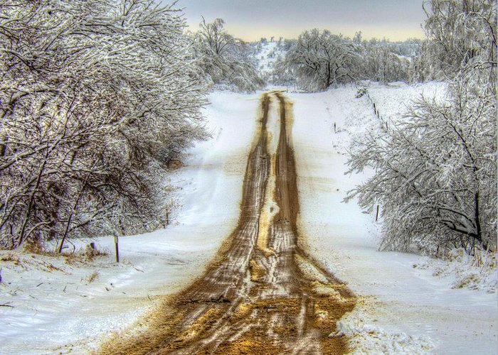 Road Greeting Card featuring the photograph Follow The Brown by M Dale