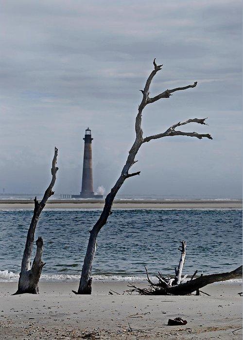 Beach Greeting Card featuring the photograph Folly Beach by Skip Willits