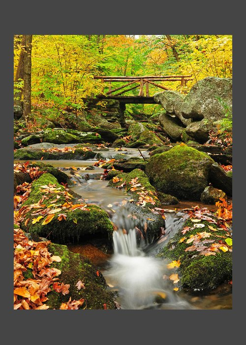 Nature Greeting Card featuring the photograph Macedonia Brook Crossing by T-S Photo Art