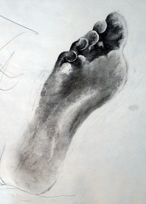 Toes Greeting Card featuring the drawing Foot Study by Corina Bishop
