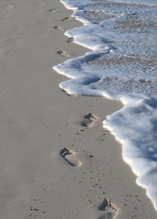Caribbean Greeting Card featuring the photograph Footprints In The Sand by Caroline Stella