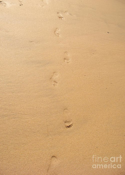 Footprints Greeting Card featuring the photograph Footprints In The Sand by Pixel Chimp
