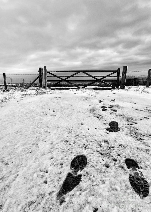 Black And White. Mono. Monochromatic Greeting Card featuring the photograph Footprints In The Snow by John Farnan