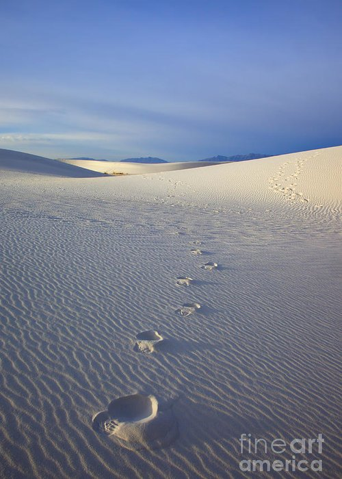 White Sands Greeting Card featuring the photograph Footprints by Mike Dawson
