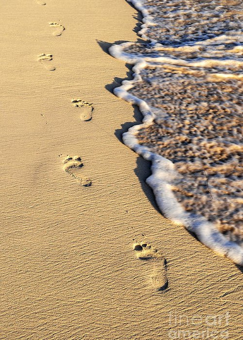 Footprints Greeting Card featuring the photograph Footprints On Beach by Elena Elisseeva