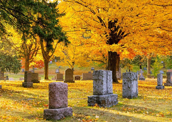 forest Hill forest Hill Cemetery woodland Autumn Cemetery Graveyard Trees Leaves Duluth Serenity Peace Tombstones Wind winds Of Change blowing Leaves nature fall Color mary Amerman Greeting Card featuring the photograph Autumn At Forest Hill by Mary Amerman