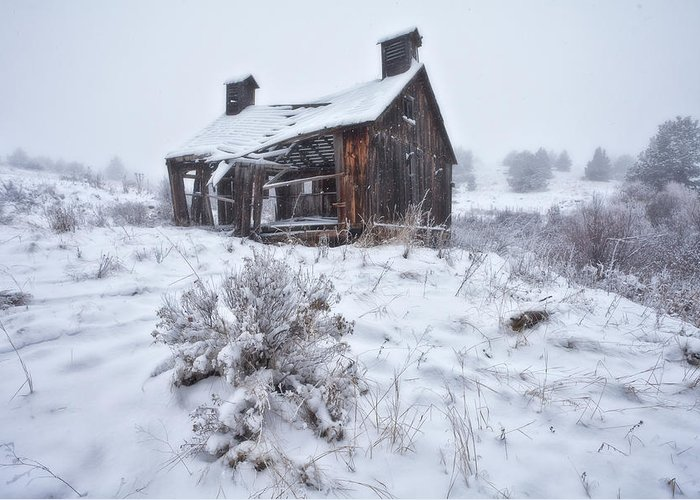 Ghost Town Greeting Card featuring the photograph Forgotten In Time by Darren White
