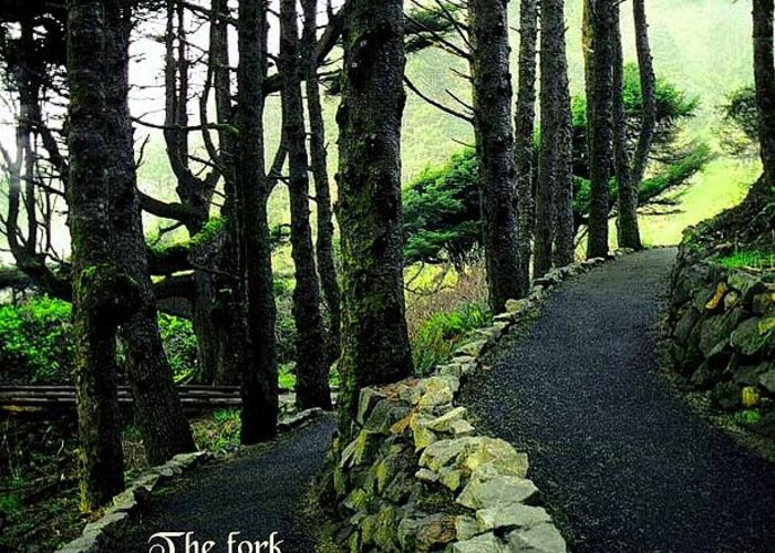 Quotation Greeting Card featuring the photograph Fork In The Road by Mike Flynn