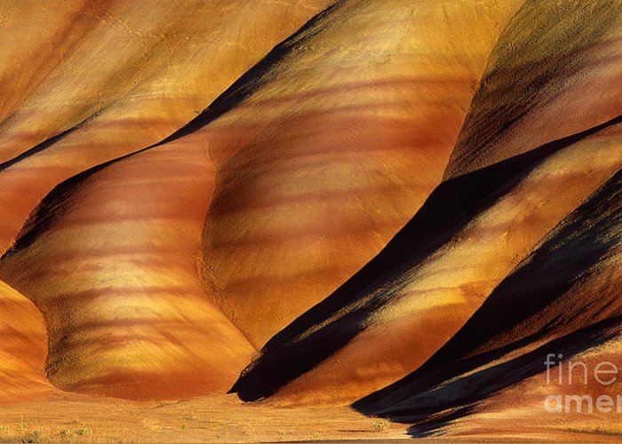 America Greeting Card featuring the photograph Fossilscape by Inge Johnsson