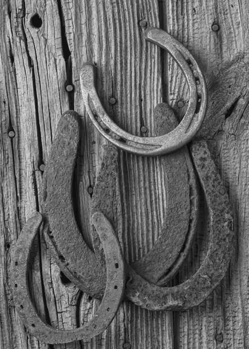 Four Horseshoes Greeting Card featuring the photograph Four Horseshoes by Garry Gay