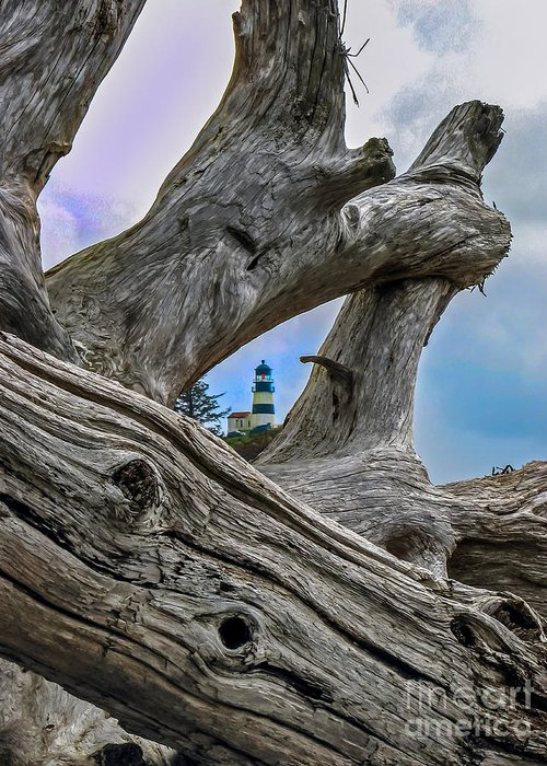 Lighthouse Greeting Card featuring the photograph Framed Lighthouse by Robert Bales