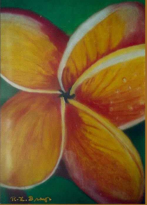 Close Up Of Yellow And Red Flower With Large Petals On Green Background. Greeting Card featuring the painting Frangipani Bloom by Robert Bray